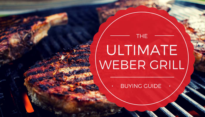 Which Weber Grill to Buy - The Ultimate Guide [2020]