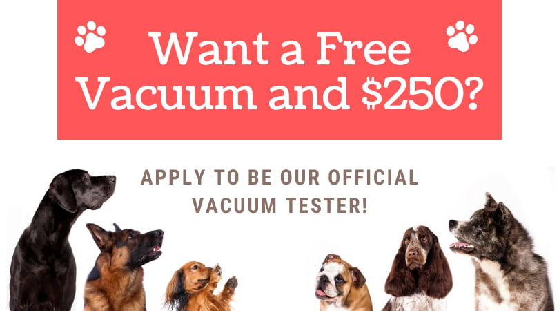 Want a Free Vacuum and $250? Apply to Be Our Official Vacuum Tester!