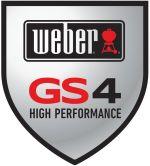 Weber GS4 Grilling System