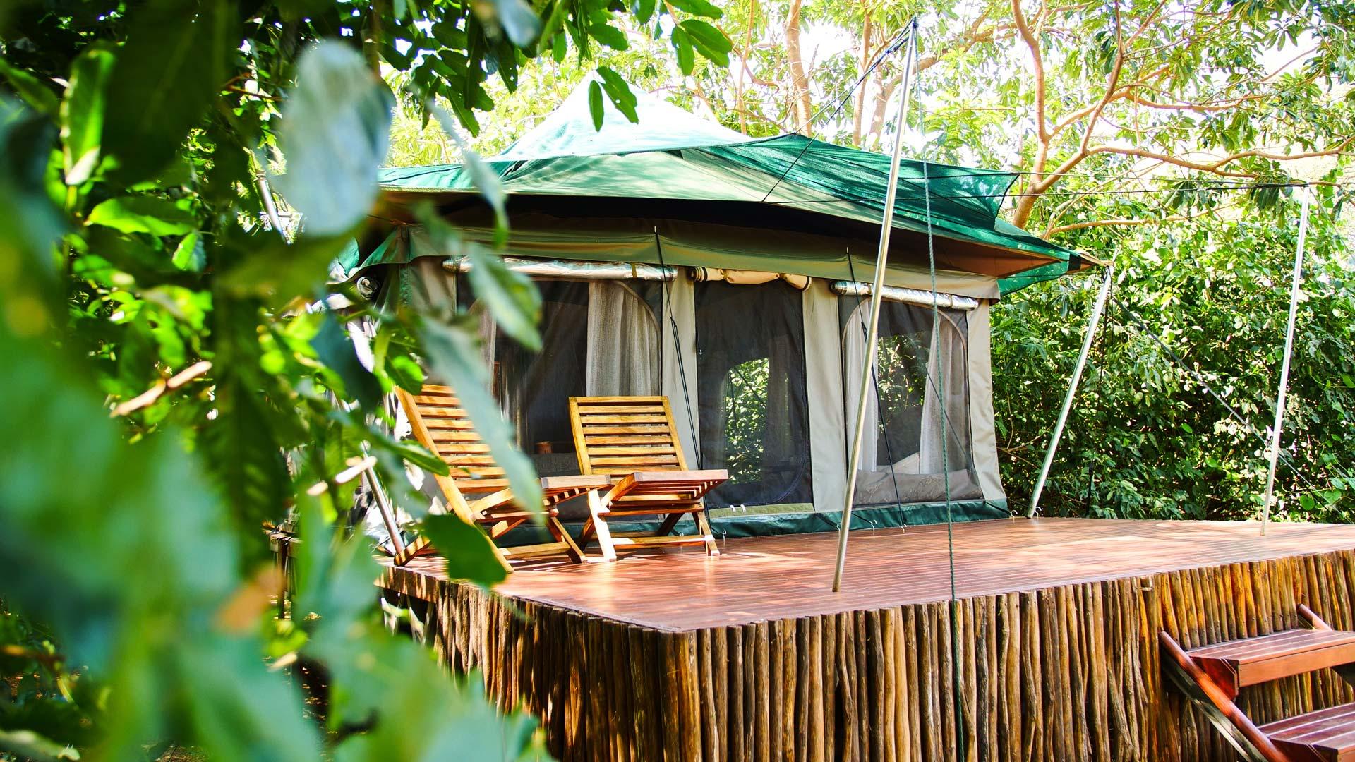 Manyara Green Camp tent