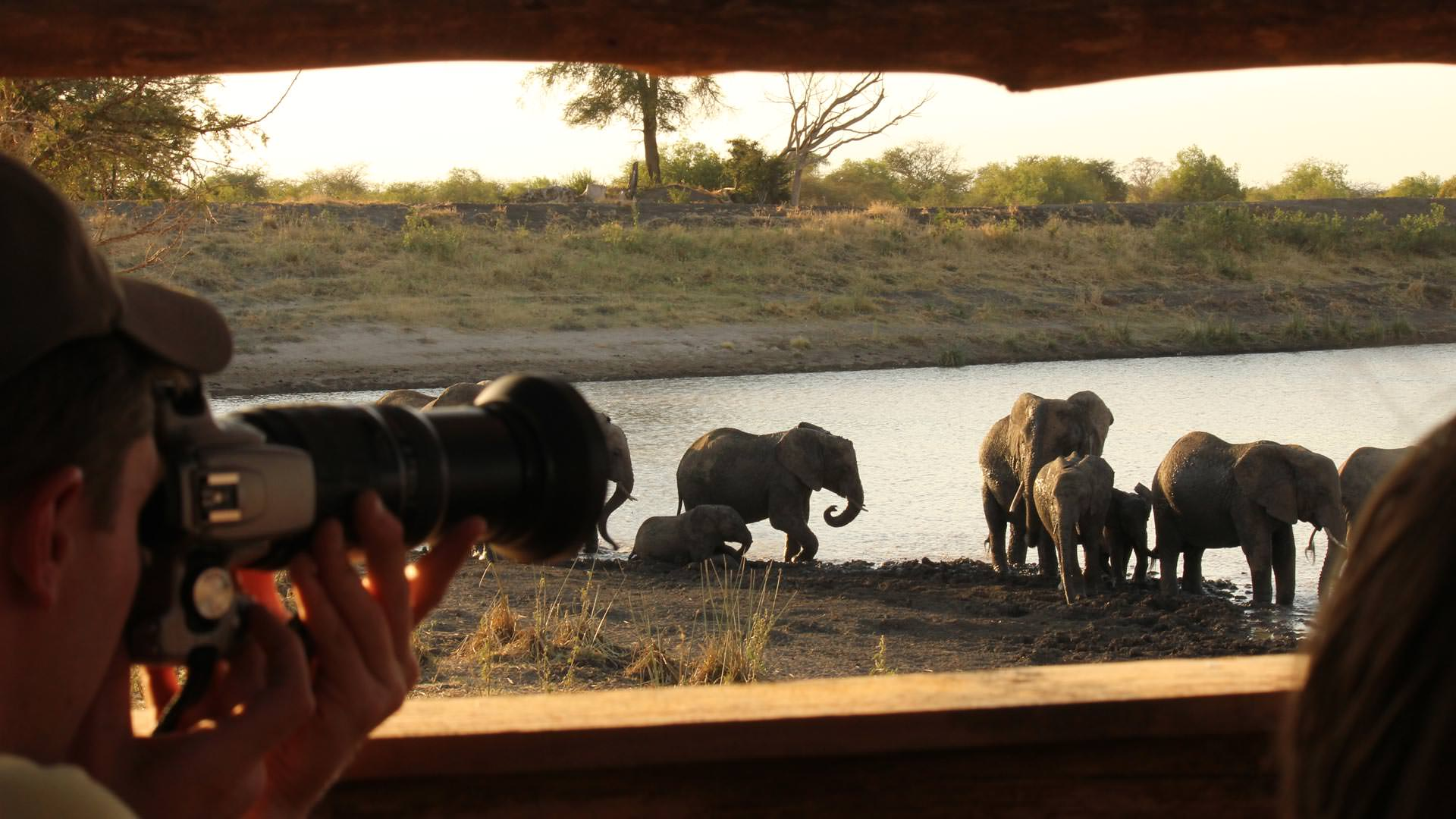 Elephants seen from hide at Manyara Ranch Conservancy
