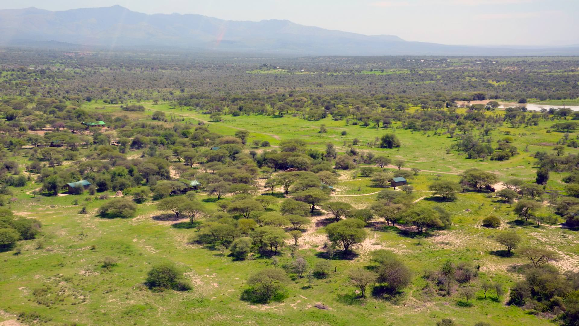 Manyara Ranch Conservancy aerial view