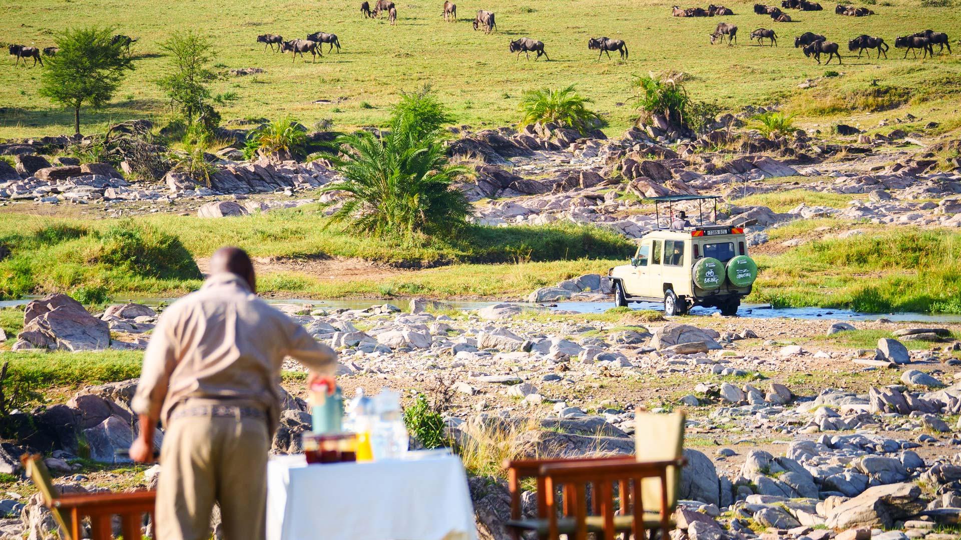 Open air breakfast with Wildebeest