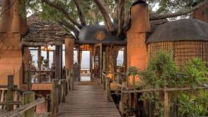 The Tree Lodge at Ngorongoro Crater Lodge