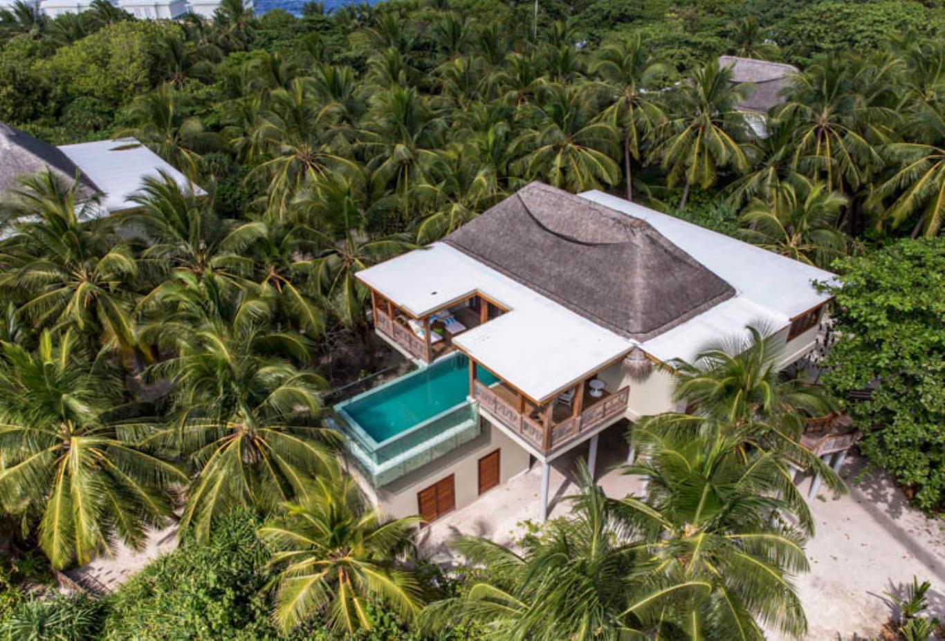 Tree House Aerial