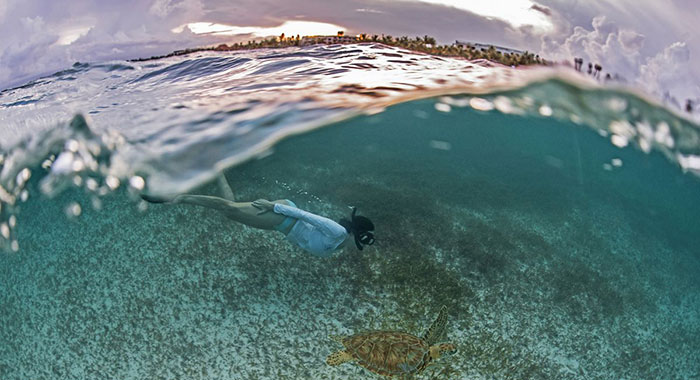 Female snorkelling under the sea