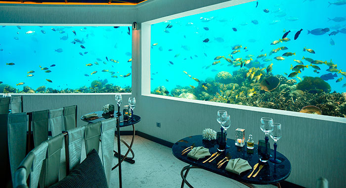 M6m and underwater dining experience