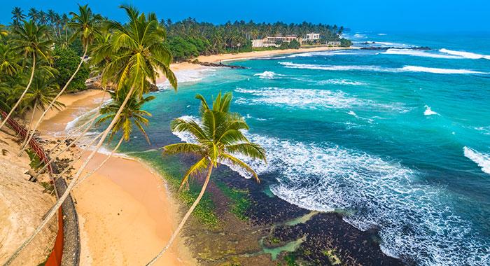 Sri Lanka beach with palm trees and blue sea