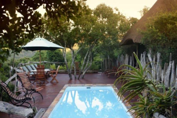 Tree Top Pool Area