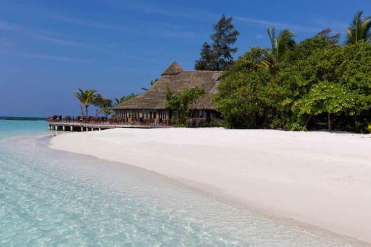 Beach and bar