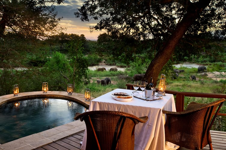 Lion Sands Tinga Lodge In Room Dining