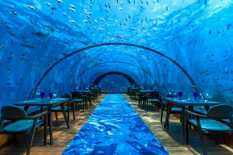 Hurawalhi Maldives Undersea Restaurant