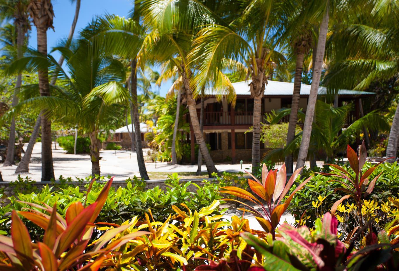 Palm View Room Garden