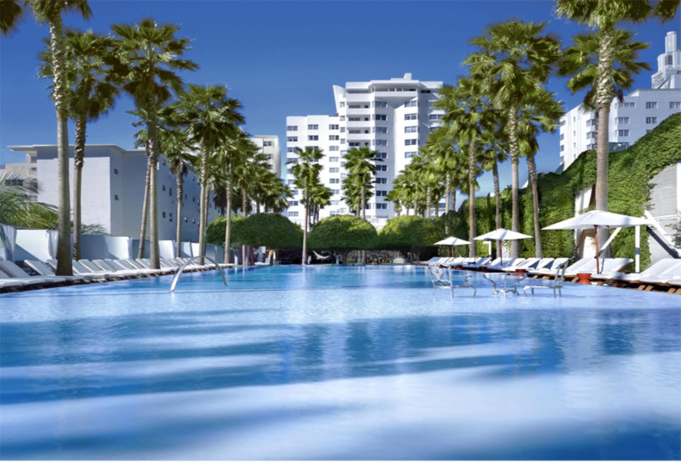 Delano Hotel and Pool