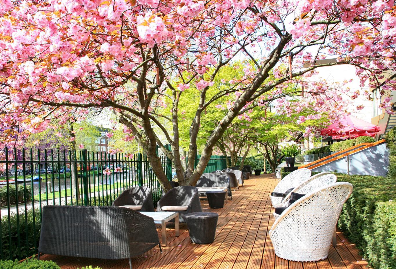 Serre Restaurant Terrace