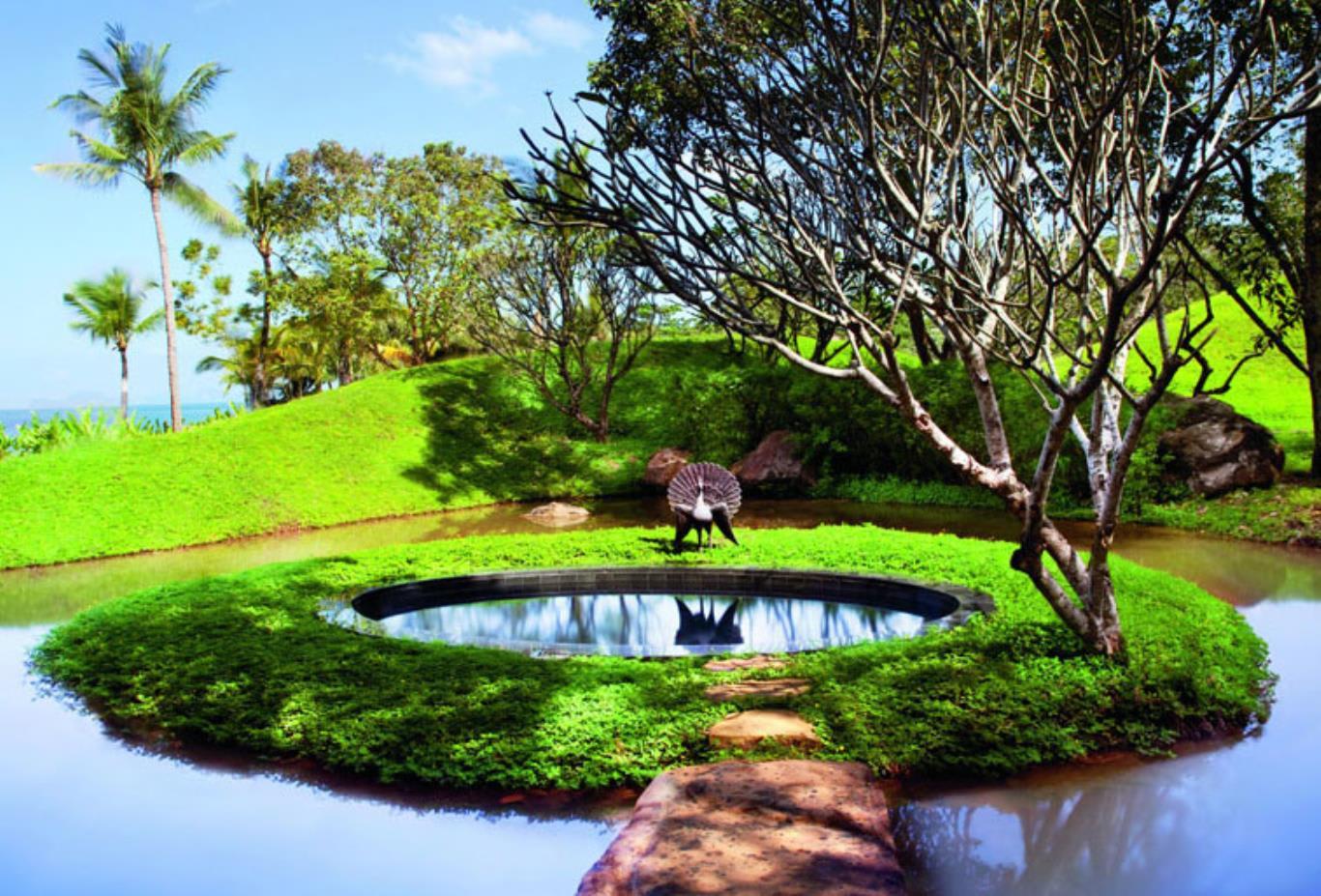 Reserve-villa-17-plunge-pool