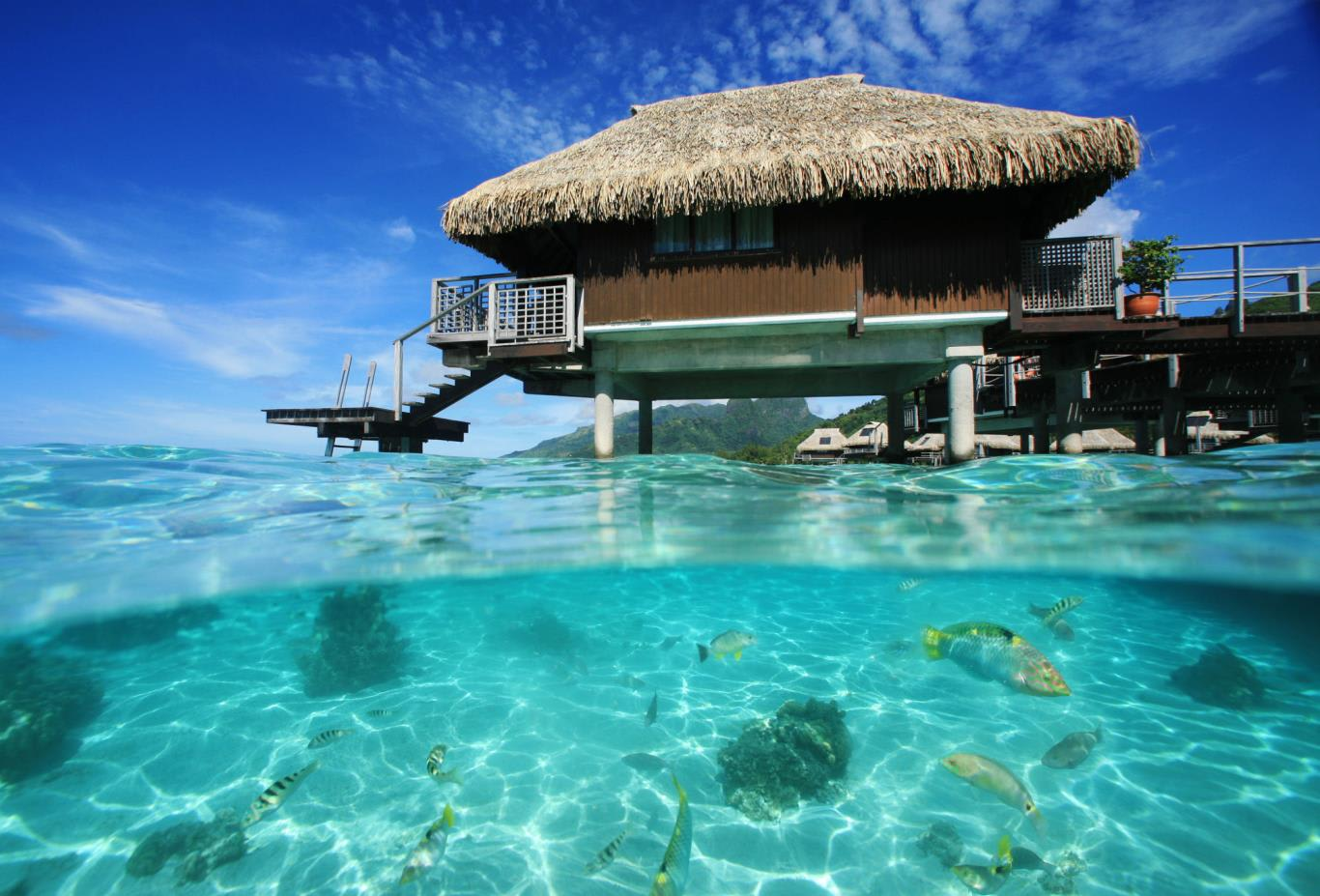 Panoramic Overwater Bungalow