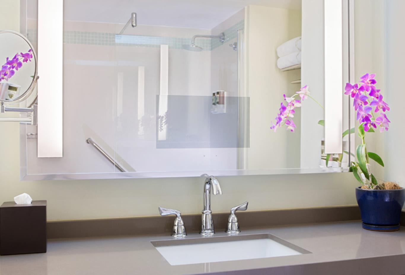 Standard - Superior Room bathroom