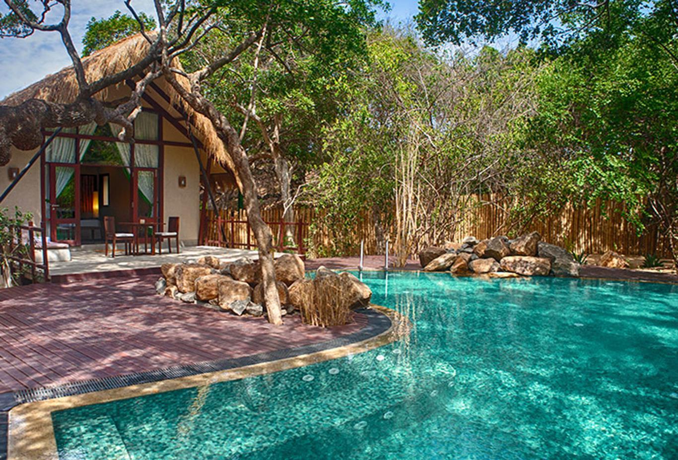 Jungle Cluster Cabin