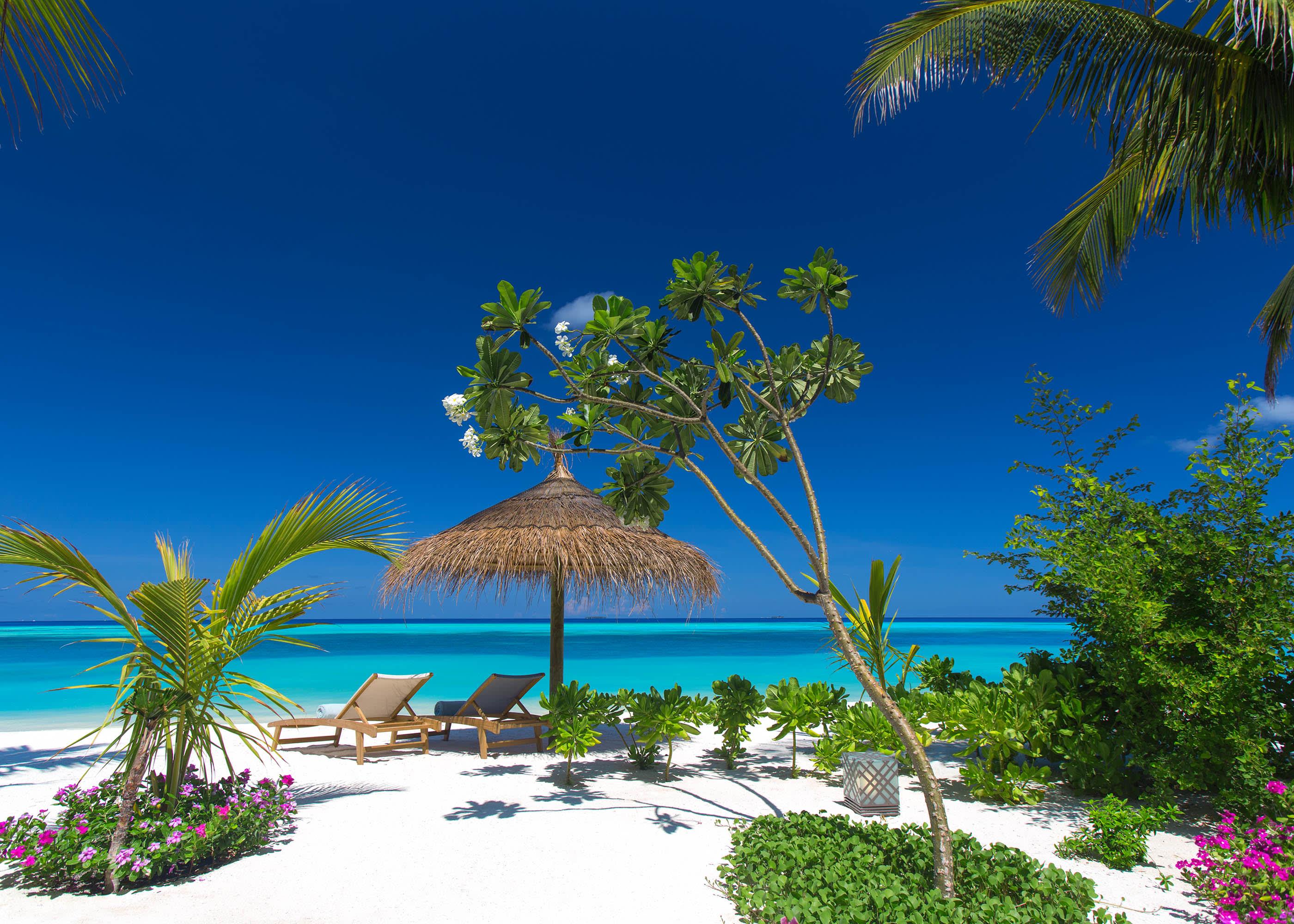 Earth villa beach view
