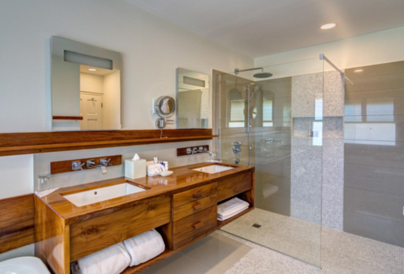 Deluxe Suite Bathroom 2