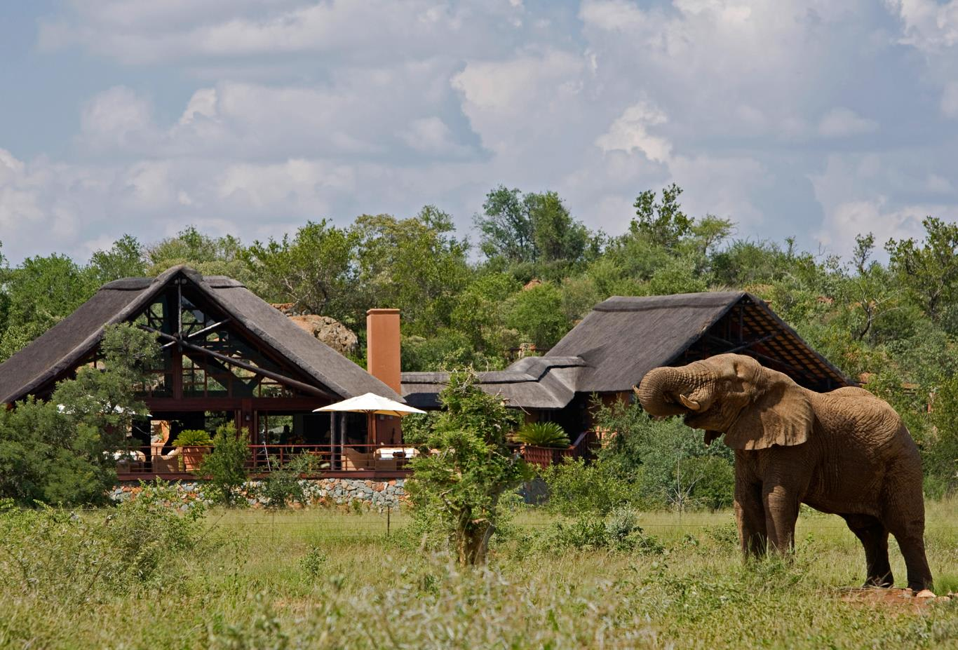 Main Lodge Waterhole