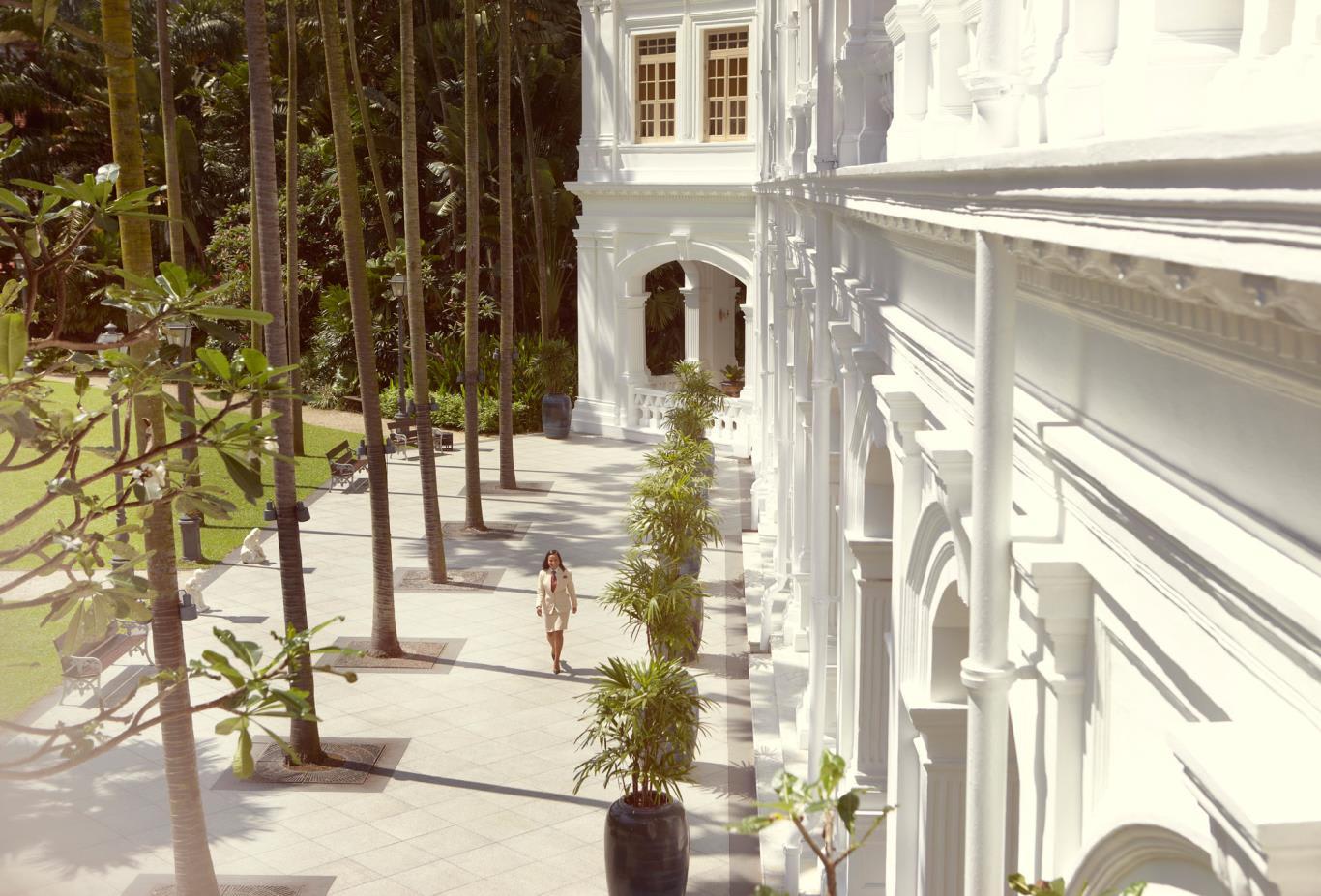 Palm-Court