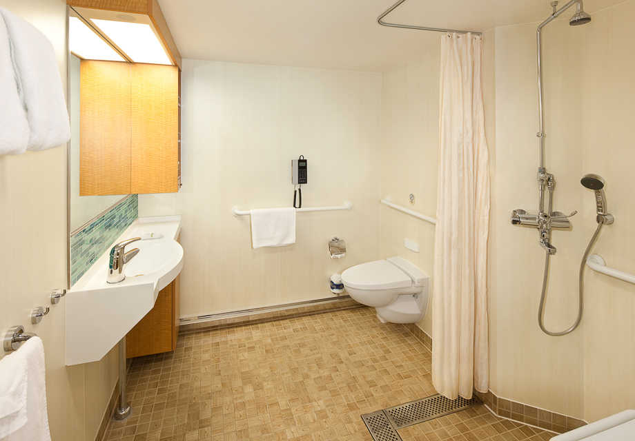Large Interior Stateroom Accessible bathroom