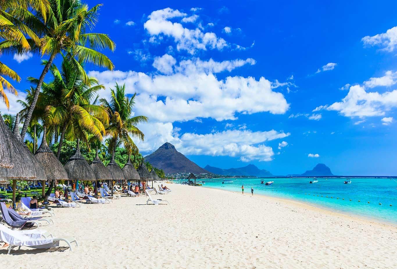 White Sand Beach Anyone?