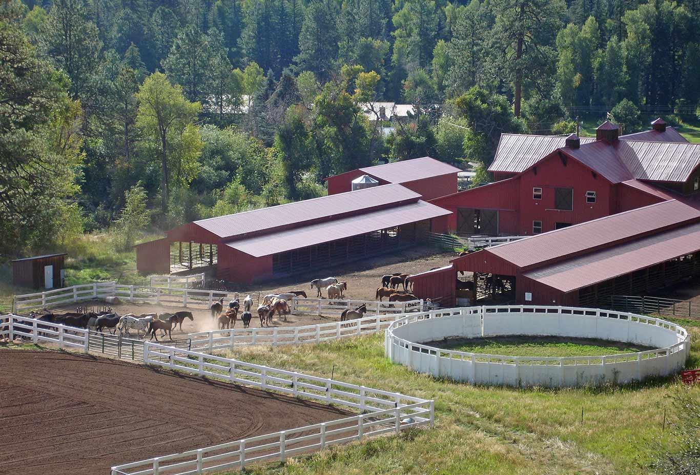 Colorado Trial Ranch