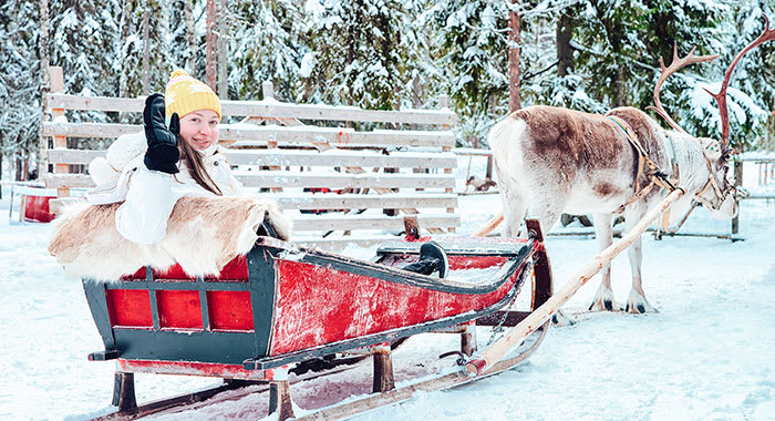 A women sat on a sled as a reindeer pulls her along