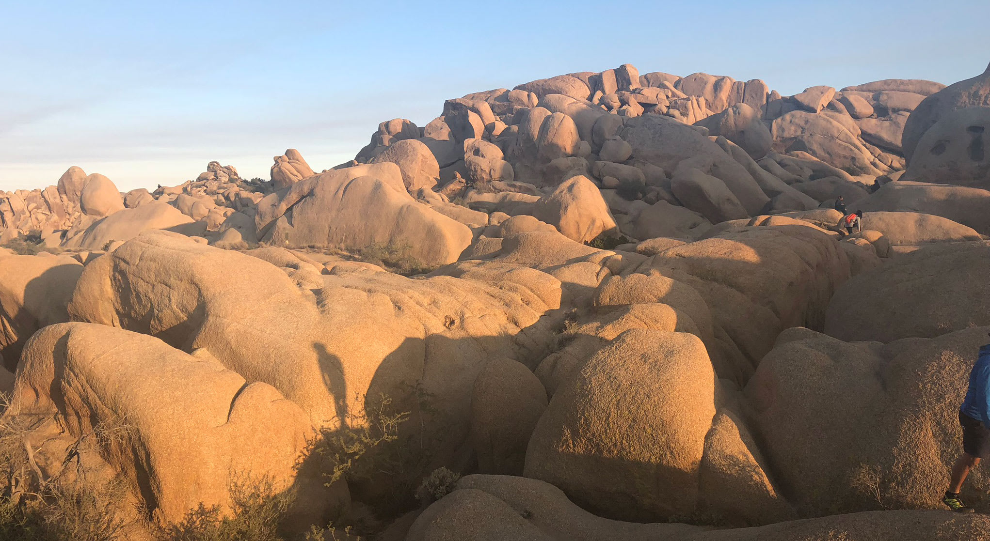 Joshua Tree National Park - famous for trees and boulders