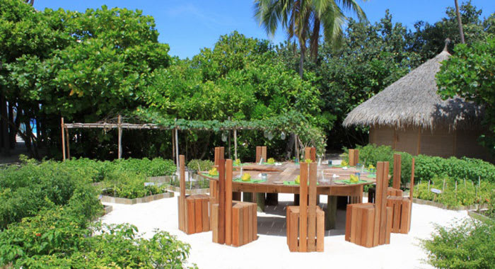 Tbel and chairs made from wood surrounded by greenery