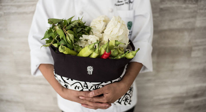 Chef holding bag of freshly picked vegetables