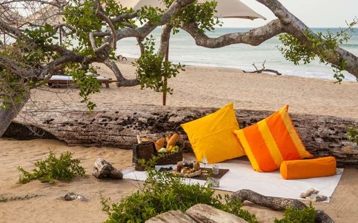 Beach Picnic at Jungle Beach Resort
