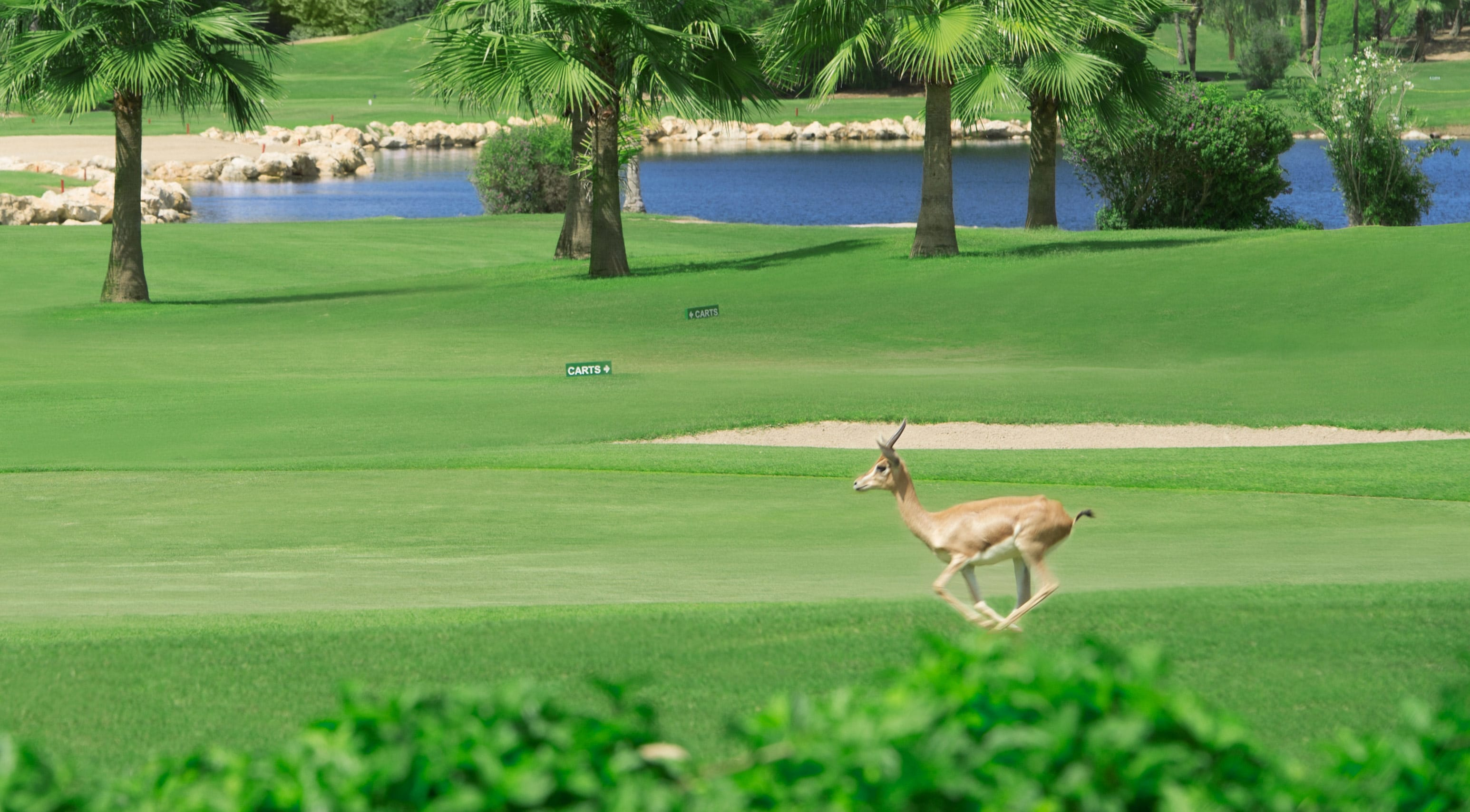 Keep your eyes open for friends on the course!