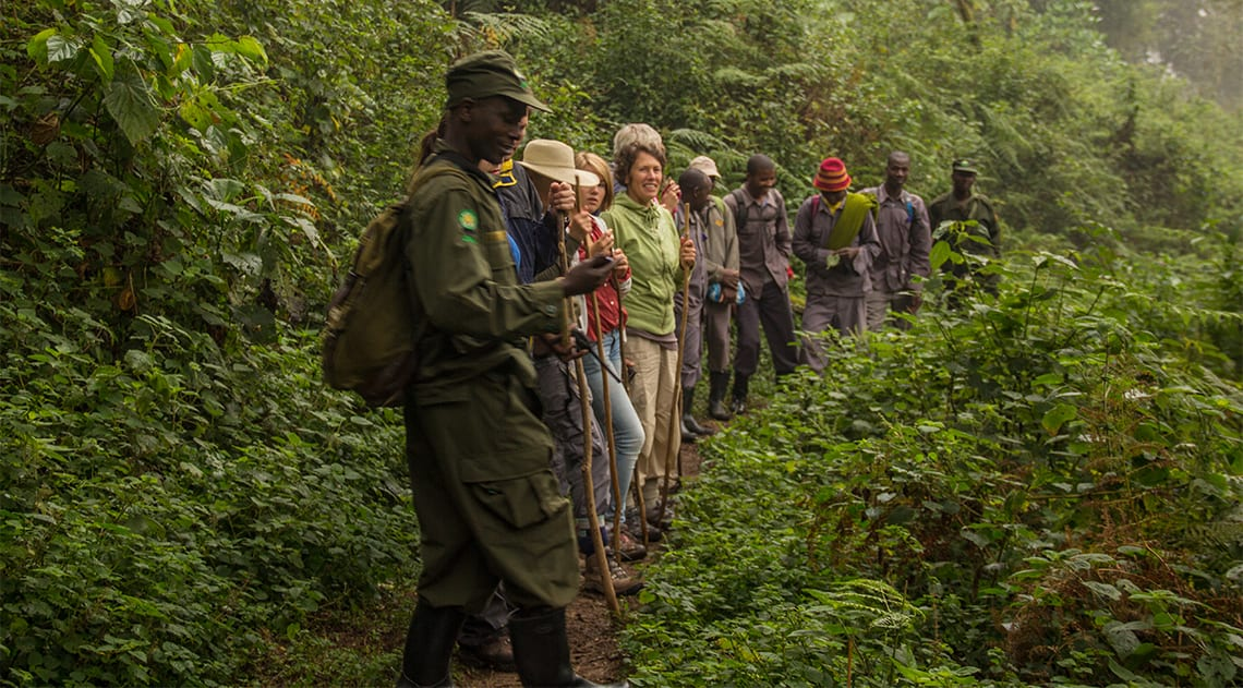 Gorilla trekking group