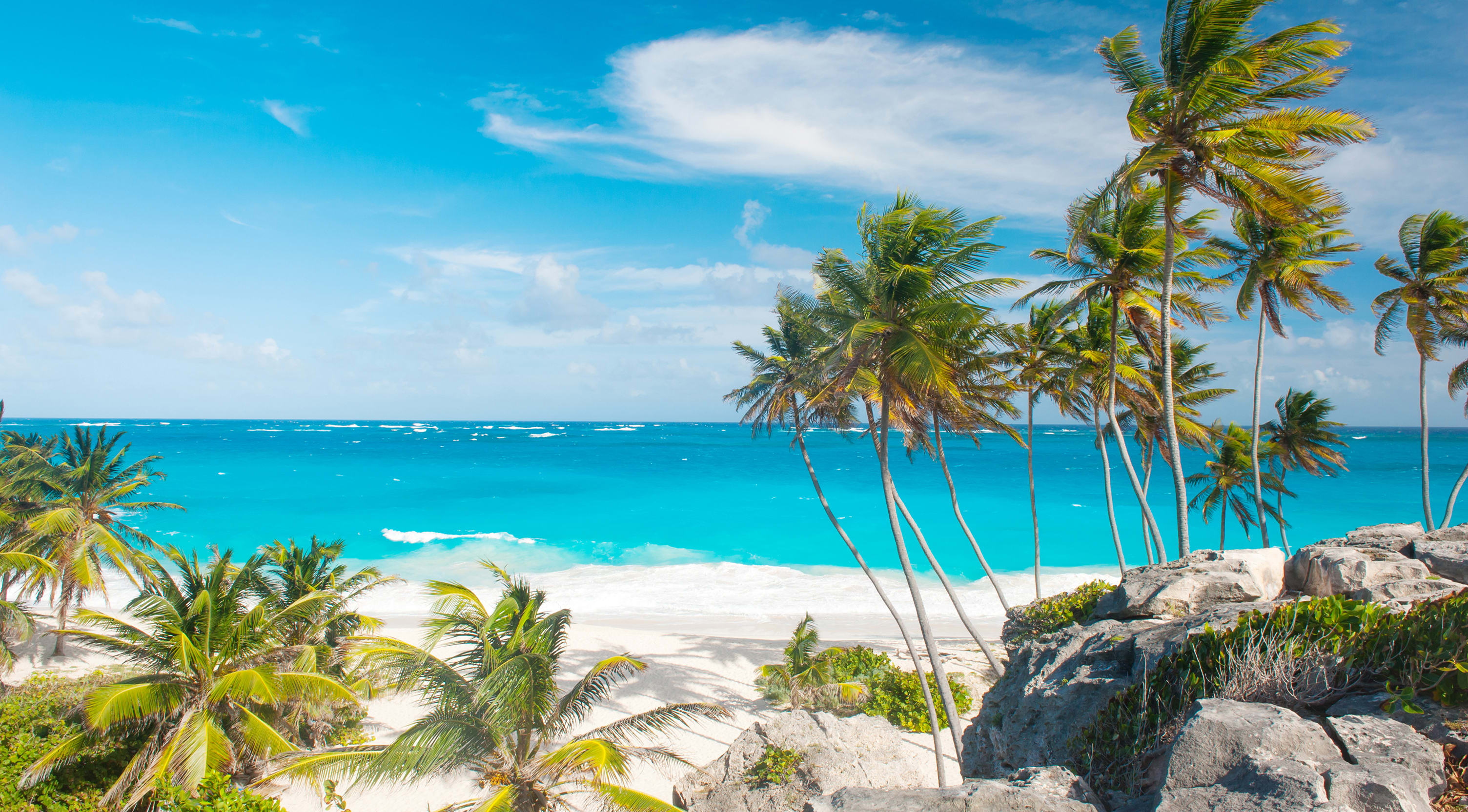 A wind sand beach with turquoise sea and palm trees