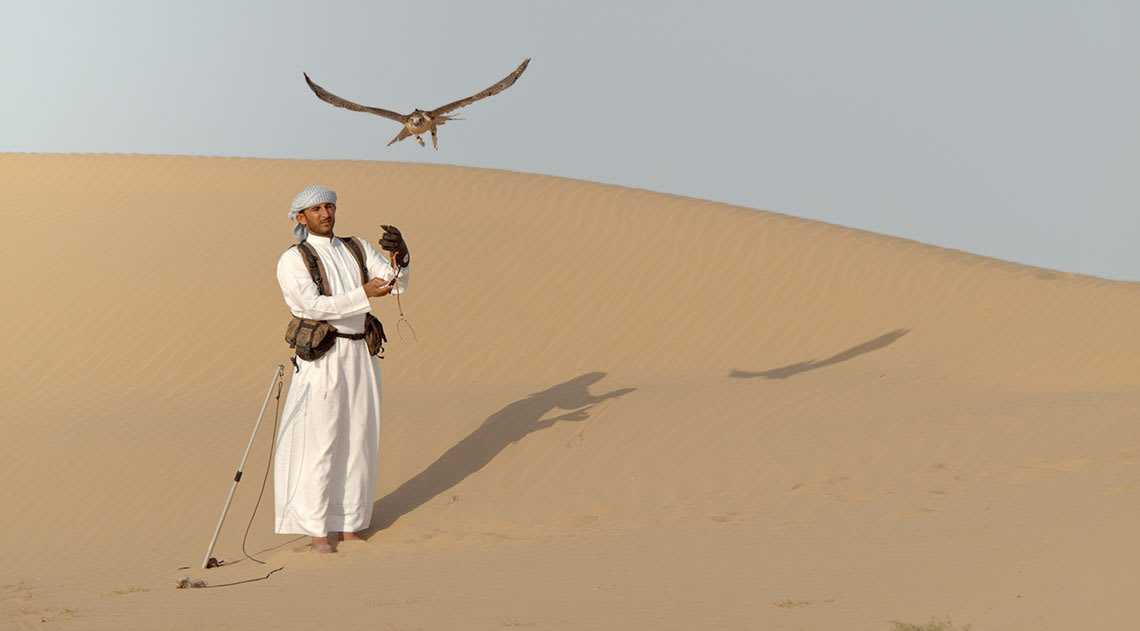 man in arabian traditional outfit with a falcon on the sand dunes