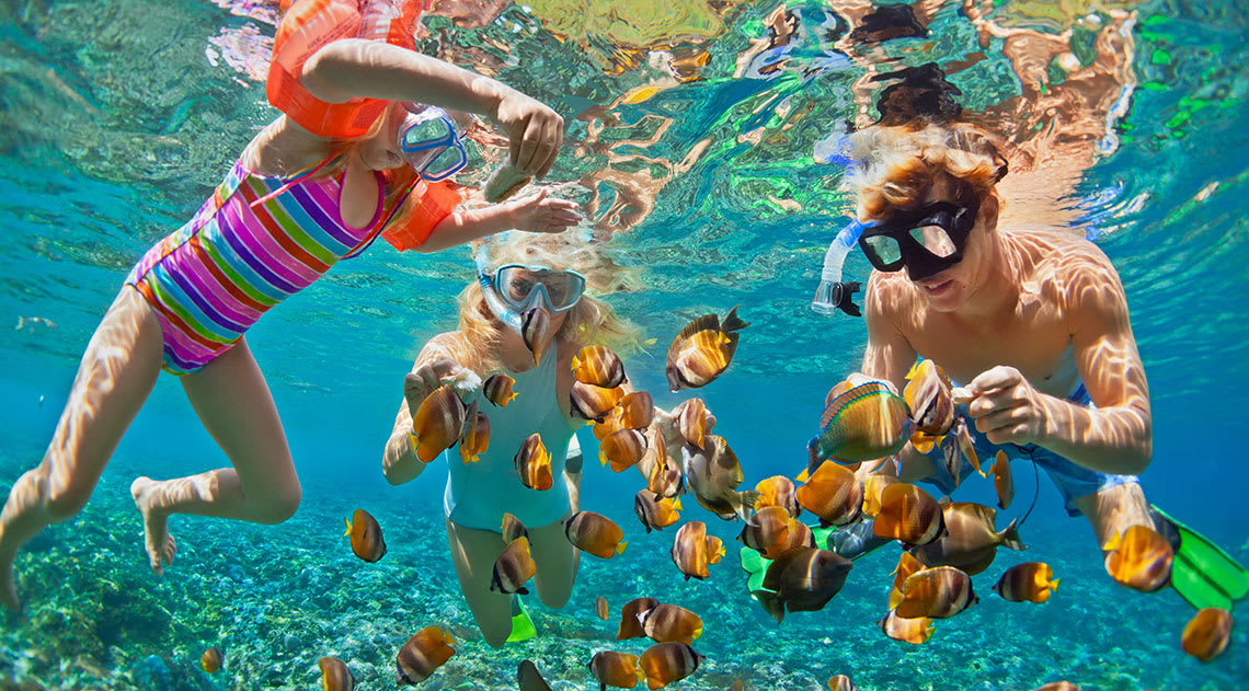 Children snorkelling under the water surrounded by fish