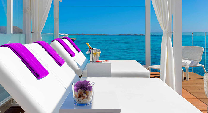 Whire sunbeds with purple cushions by the sea