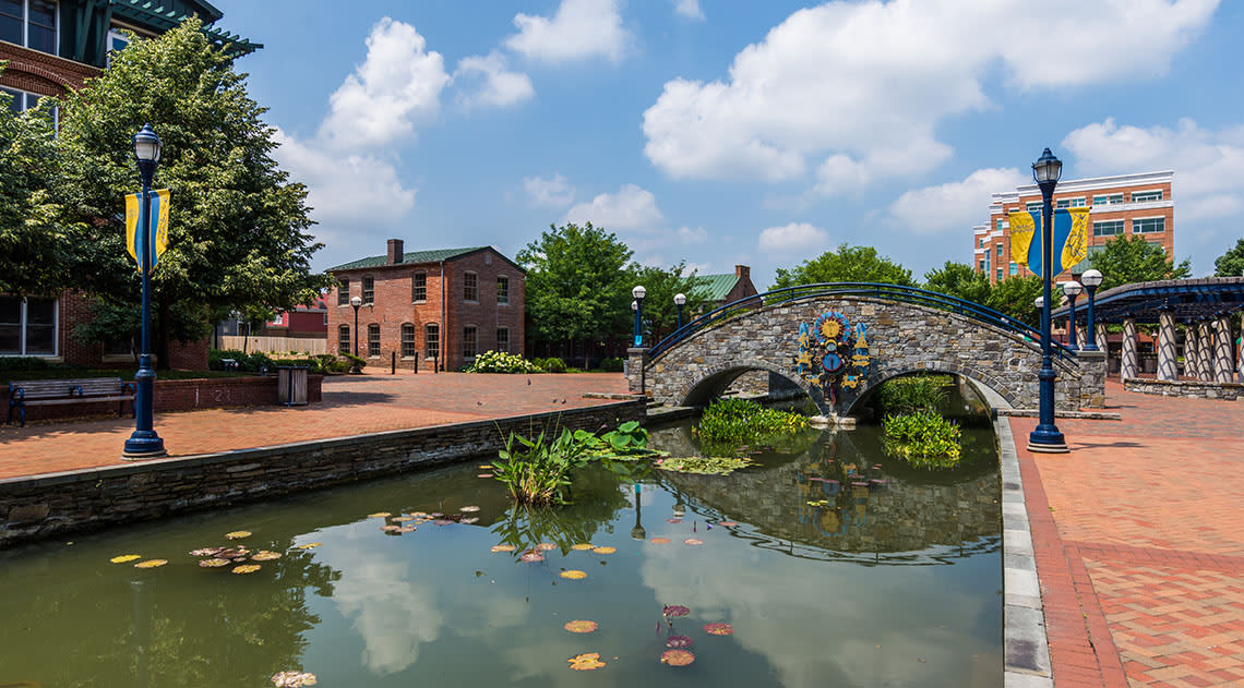 Canal in Frederick with water lilies