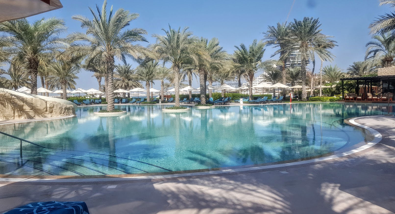 Dubai swimming pool with palm trees