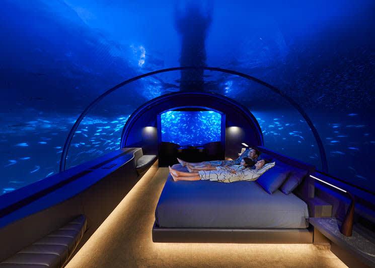 Muraka undersea marine life