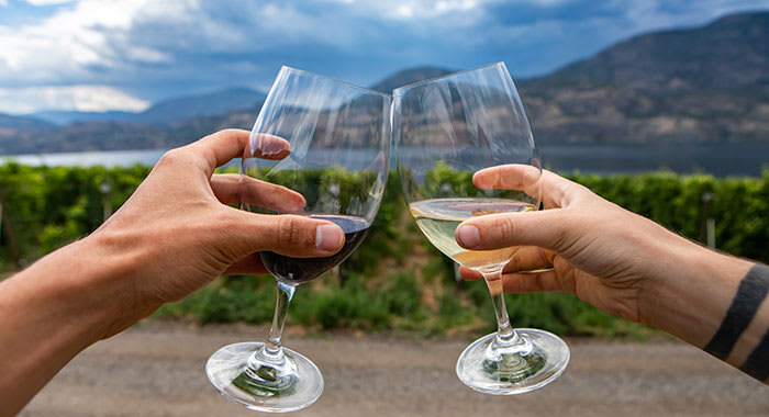 Two people holding glasses of wineb in Okanagan Valley