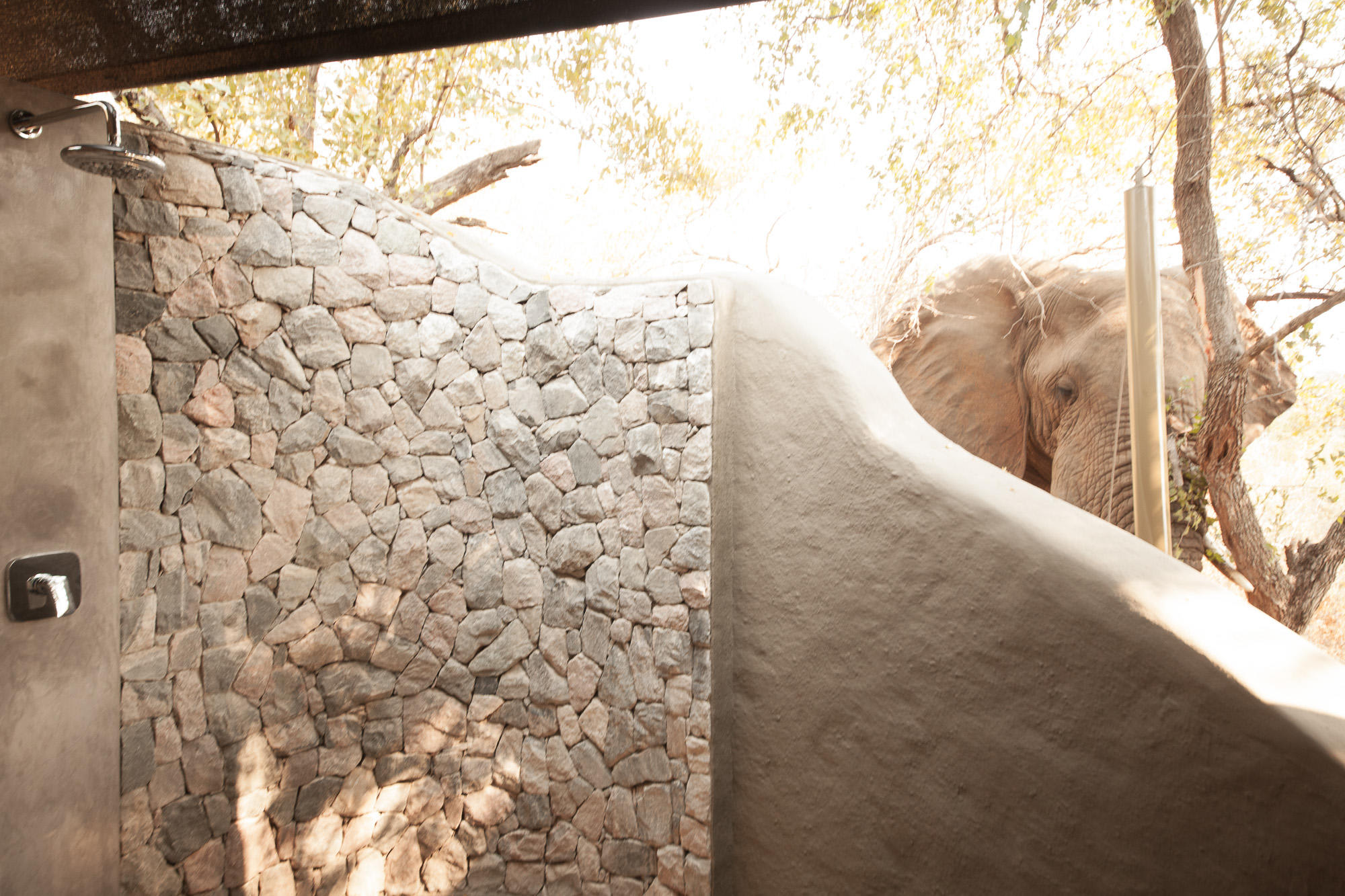 Luxury Tent Outdoor Shower with Elephant Nearby
