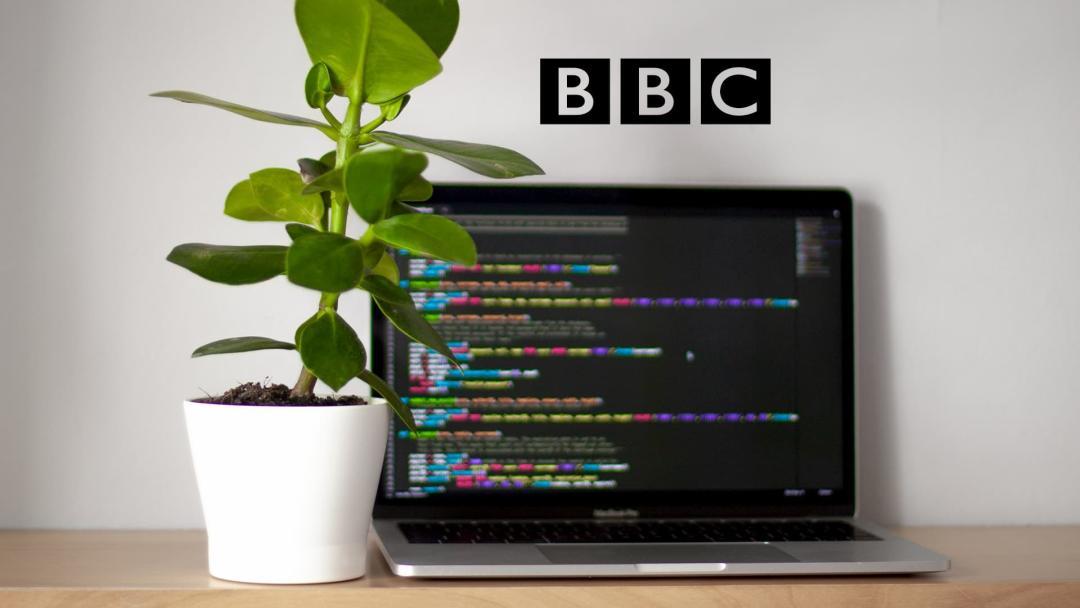 Amy Mather — BBC
