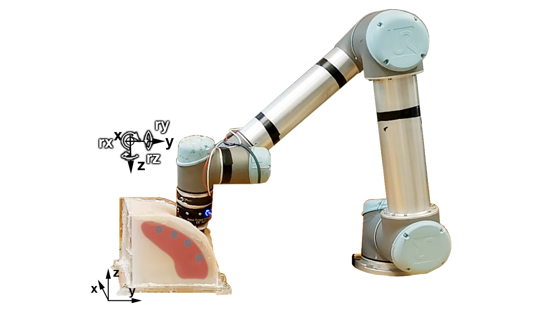 — A Soft Robotic Approach to Reinforce Medical Palpation Training