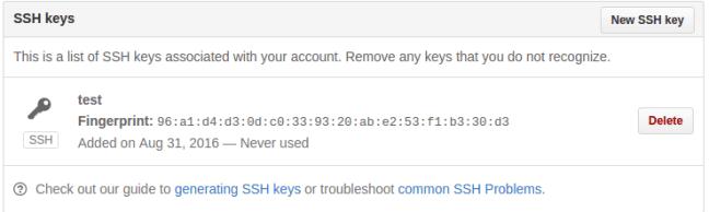github ssh key kayıt