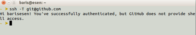github ssh successfully auth
